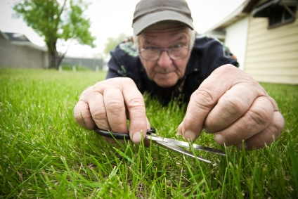 related images  Are You Cutting Your Grass ...
