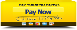 pay_through_paypal copy